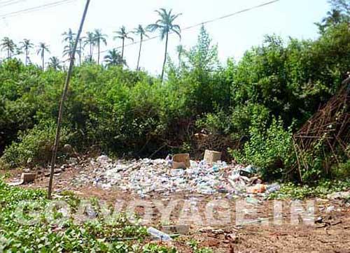 goa-beach-arambol-garbage