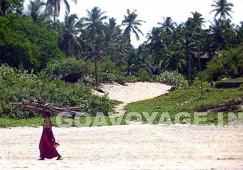 goa-beach-arambol-scene