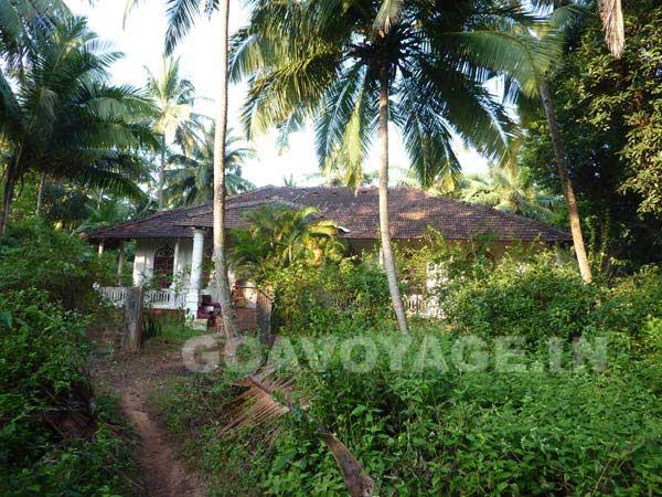 vue d'ensemble de la villa Clemente, dans la verdure, sud goa, inde