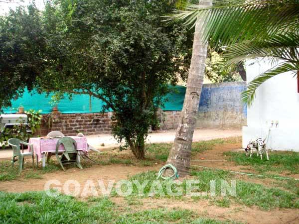 jardin arrière et mur de tennis, sud goa, inde