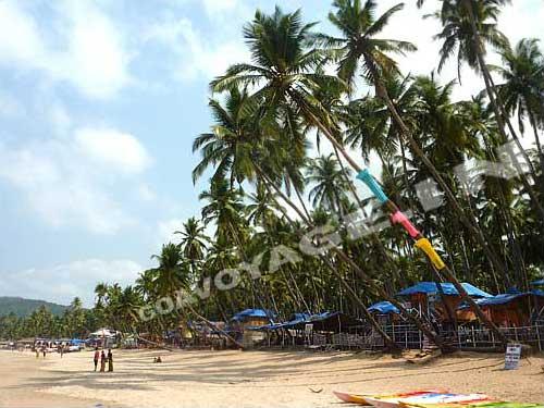 goa-beach-palolem-coconut-f