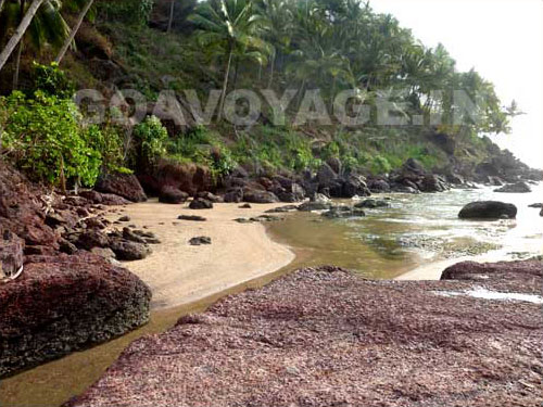 River going to sea in Canaguinim, South Goa, India